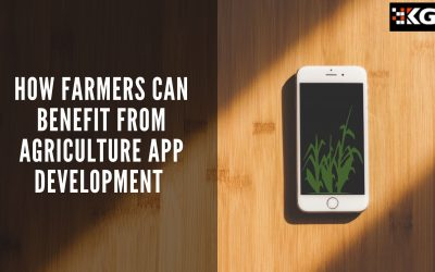 HOW FARMERS CAN BENEFIT FROM AGRICULTURE APP DEVELOPMENT