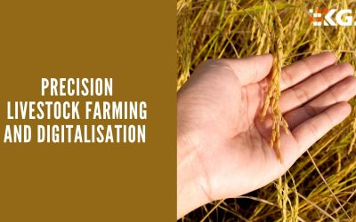 PRECISION LIVESTOCK FARMING AND DIGITALISATION