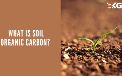 WHAT IS SOIL ORGANIC CARBON?